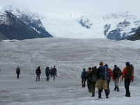 Glacier Excursion